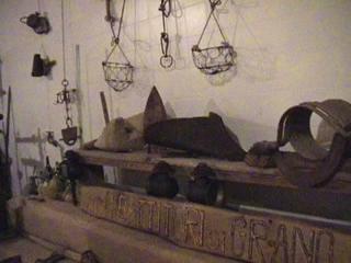 Museo Delle Attivita Agricole