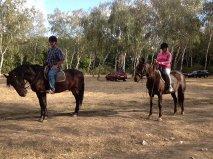 Stetson Equestrian Club