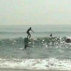 Palmetto Surf School