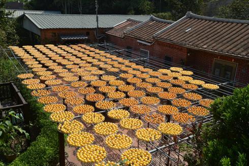 Jinhan Dried Persimmon
