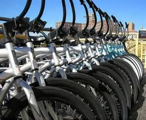 Marathon Bicycle Rental