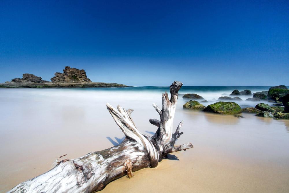 nambucca headland also sneak - photo #15