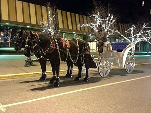‪Horse Drawn Carriage Co., LLC‬