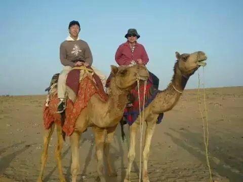 Desert Dream Tours - Day Tours
