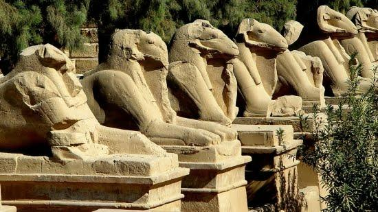 Luxor Travel Services - Day Tours