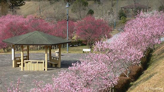 Hotarunosato, Motogi River Park