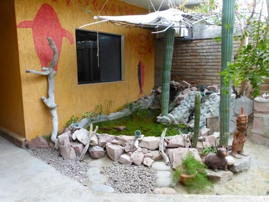 Baja Paradise