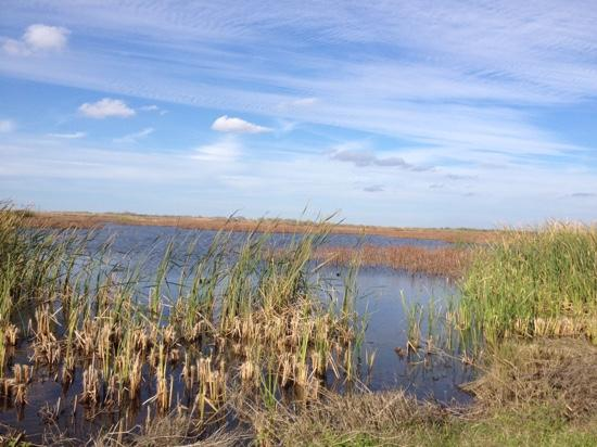 Brazoria National Wildlife Refuge