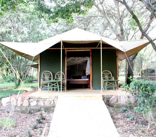 Mara Springs Safari Camp