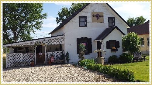 Helina Marie's Wine Bar, Wine Shop, Gifts & Decor