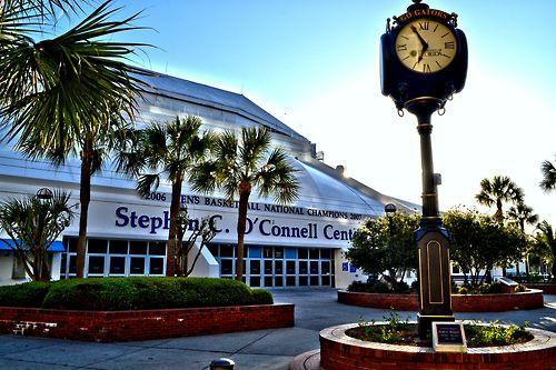 ‪Stephen C. O'Connell Center‬
