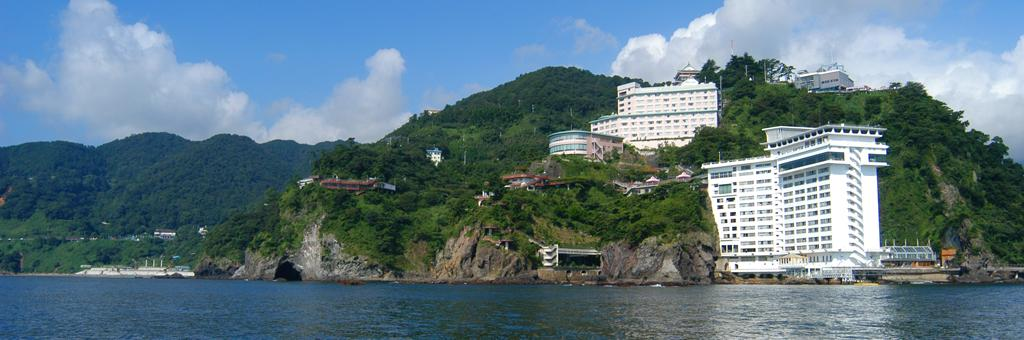 Hotel New Akao