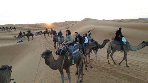 Morocco Desert Safari - Day Tours