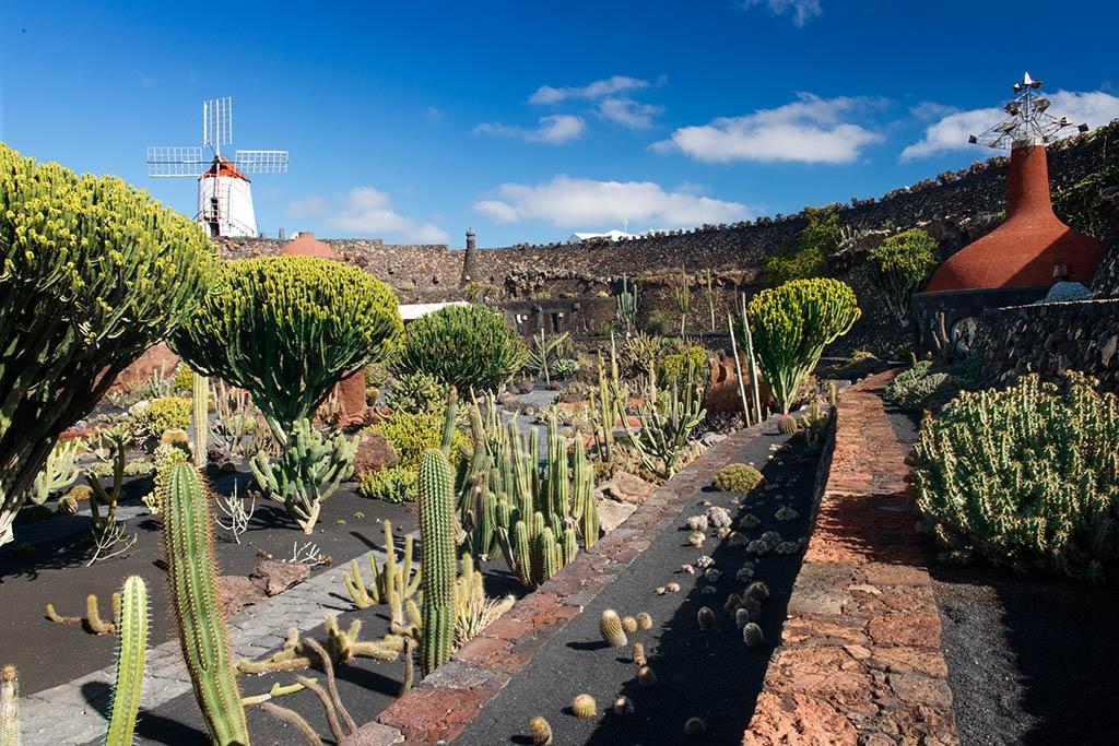 Jardin de Cactus (Guatiza, Spain): Top Tips Before You Go (with Photos) - Tri...