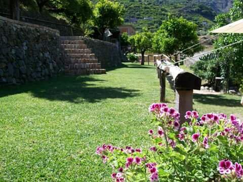 Agriculturale Terra di Santo Stefano