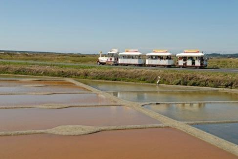 Le Petit Train des Marais Salants