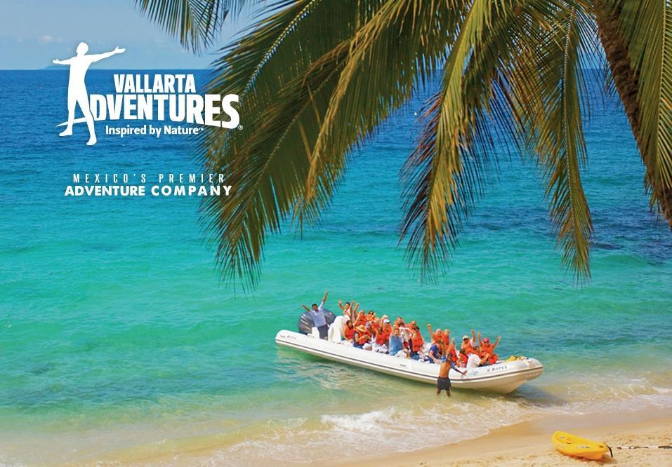 Sea Safari By Vallarta Adventures Puerto Vallarta 2018 Ce Qu Il Faut Savoir Pour Votre