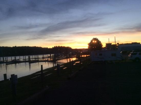 Port of Siuslaw Campground