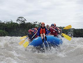 Ara Adventure River Amazonas