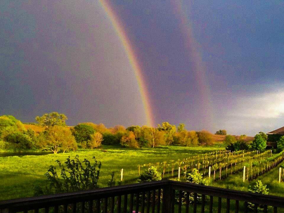 林肯 內布拉斯加州 Deer Springs Winery 旅遊景點評論