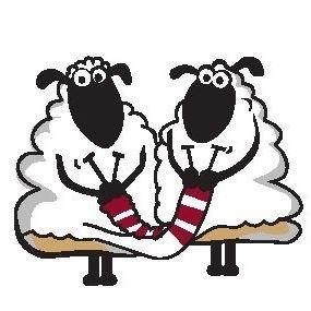 Wool for ewe