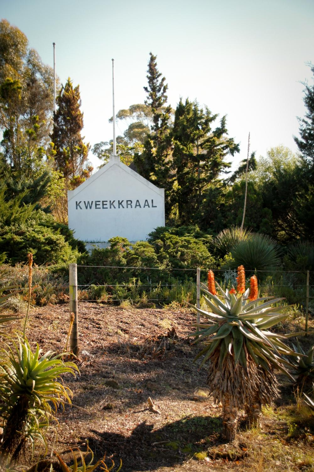 Riversdale South Africa  city photos gallery : Kweekkraal Guest Farm Riversdale, South Africa Lodge Reviews ...