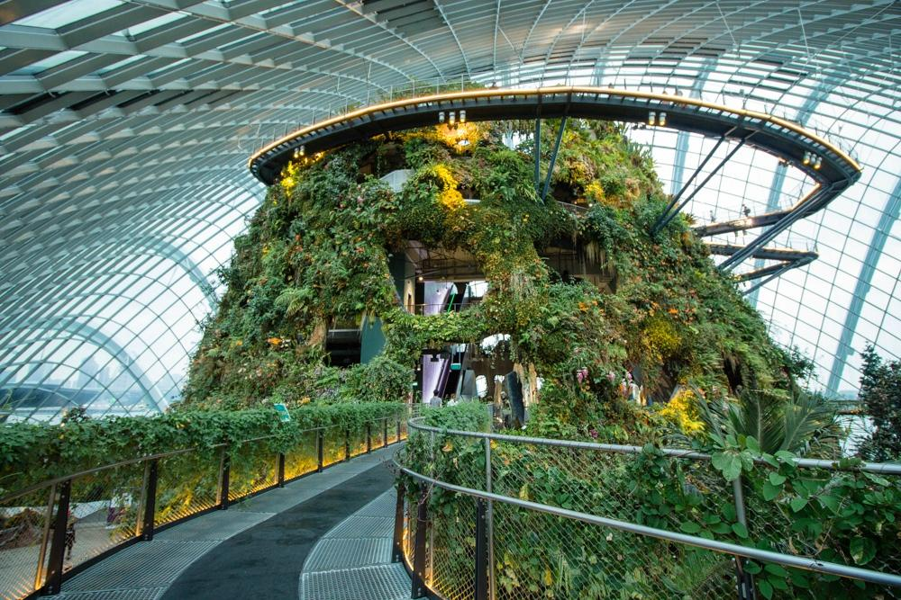 Gardens By The Bay Singapore Top Tips Before You Go
