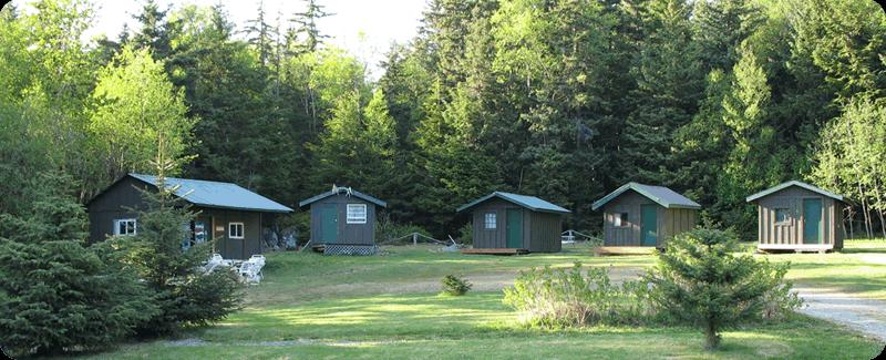 Bear Creek Cabins and Hostel