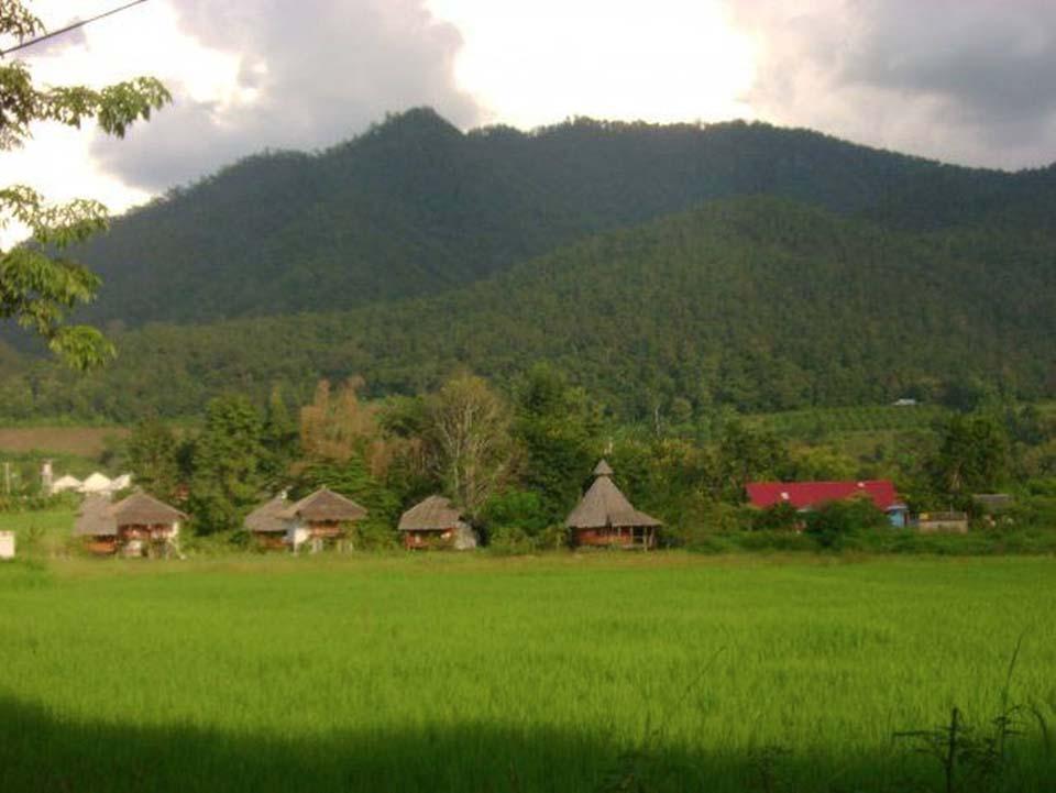 Ing Doi House