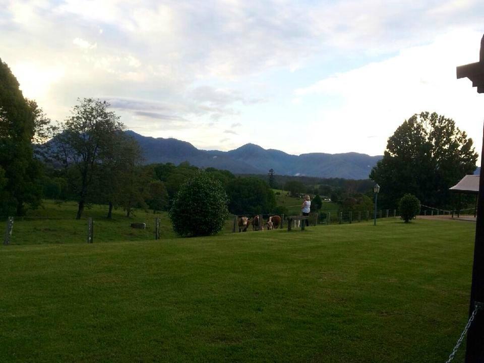 Bellingen Valley Lodge