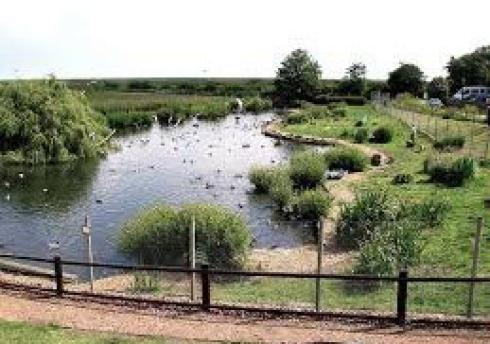 ‪Blakeney Conservation Duck Pond‬