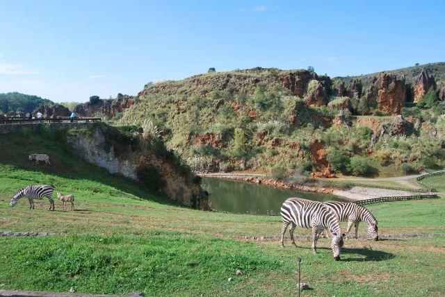Parque de la Naturaleza de Cabarceno - Obregon - Aktuelle 2017 - Lohnt es sich?