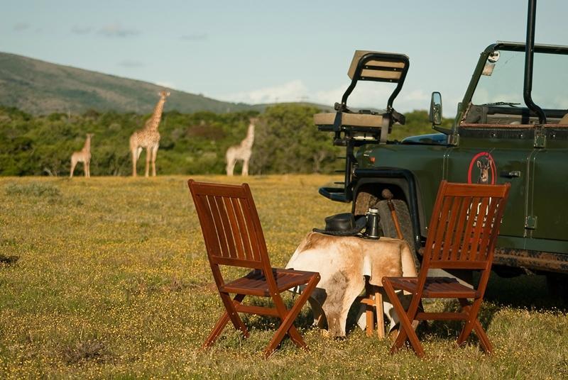 Olive Park Lodge - Temba Game Reserve