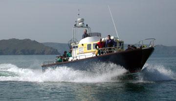 Dive Pembrokeshire