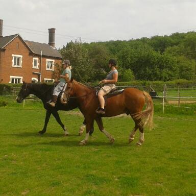 Nedge Farm Riding Centre