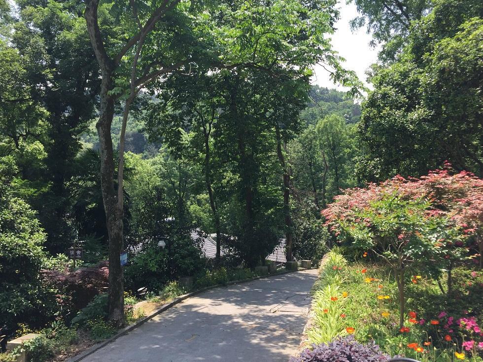 杭州悠山庭院