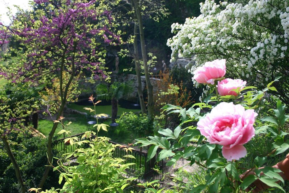 Le jardin d 39 eden tournon sur rhone all you need to for Jardin d eden