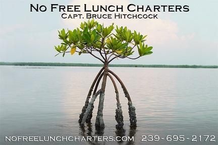 No Free Lunch Fishing Charters