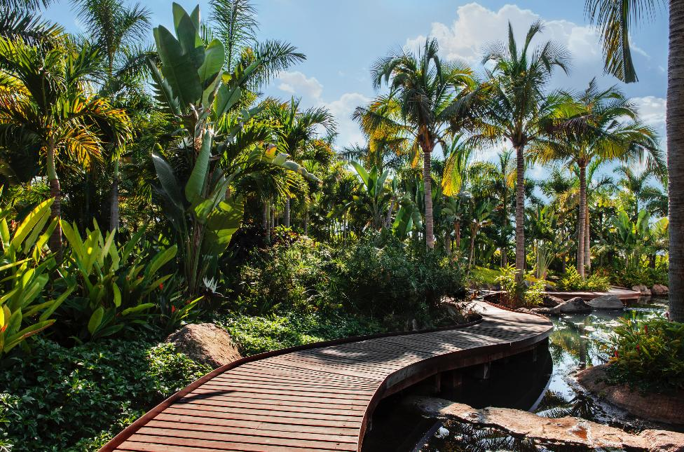 Jardines de mexico jojutla award winning top tips for Jardin tropical