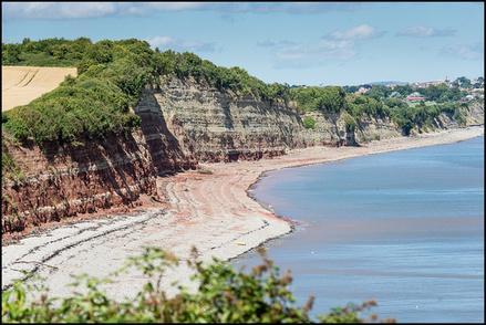 Fossil Hunt Wales