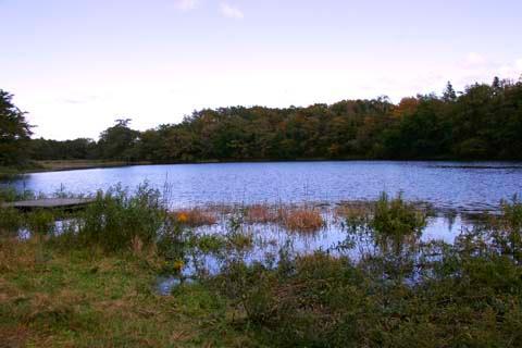 Kuchinashi Pond