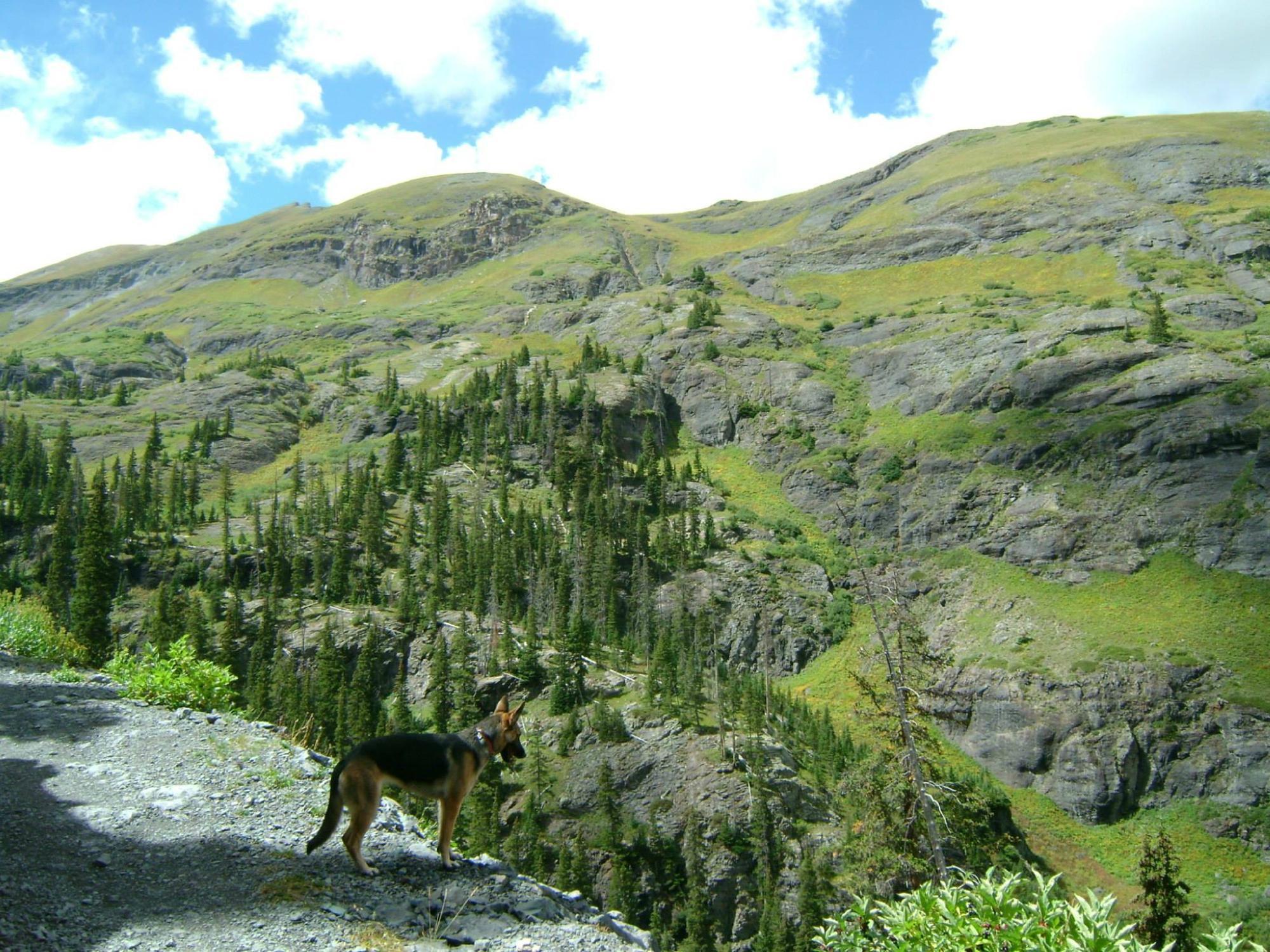 Telluride Colorado Hike