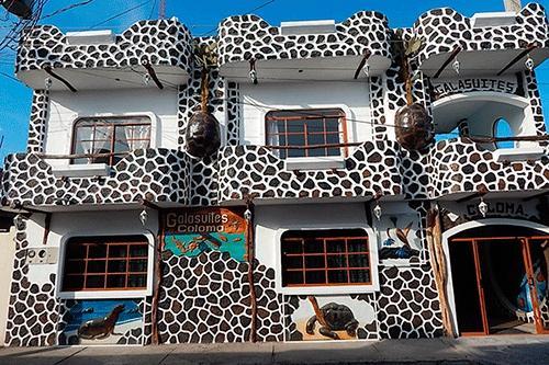 Coloma Galapagos Hostal
