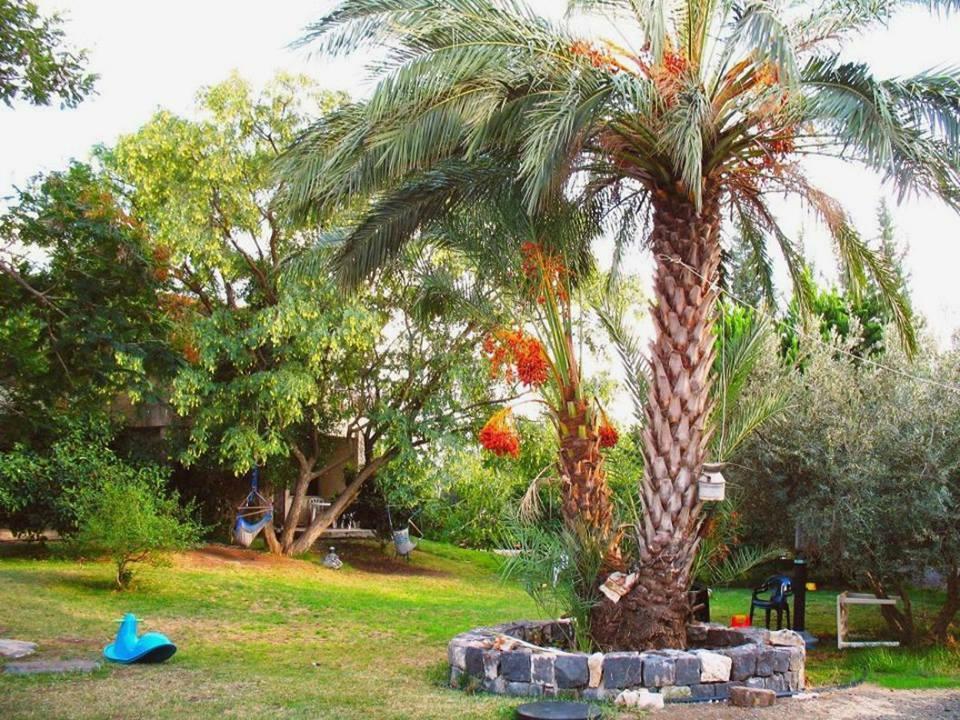 Karaso B&B Galilee Country Lodging