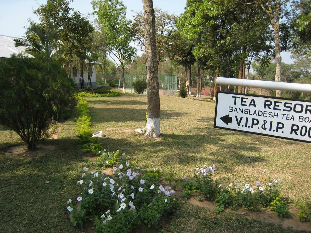 Srimangal Tea Resort