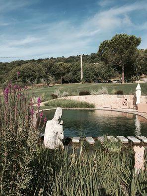 Uitzicht op het natuurlijke zwembad