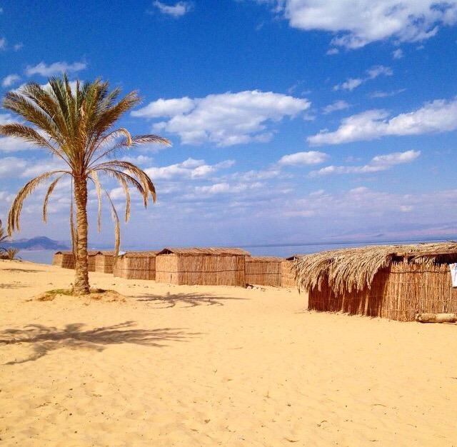 Big Dune Camp