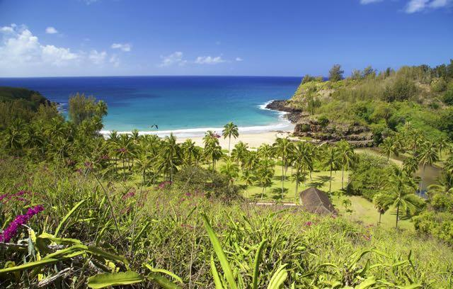 Allerton Garden Poipu HI Top Tips Before You Go TripAdvisor