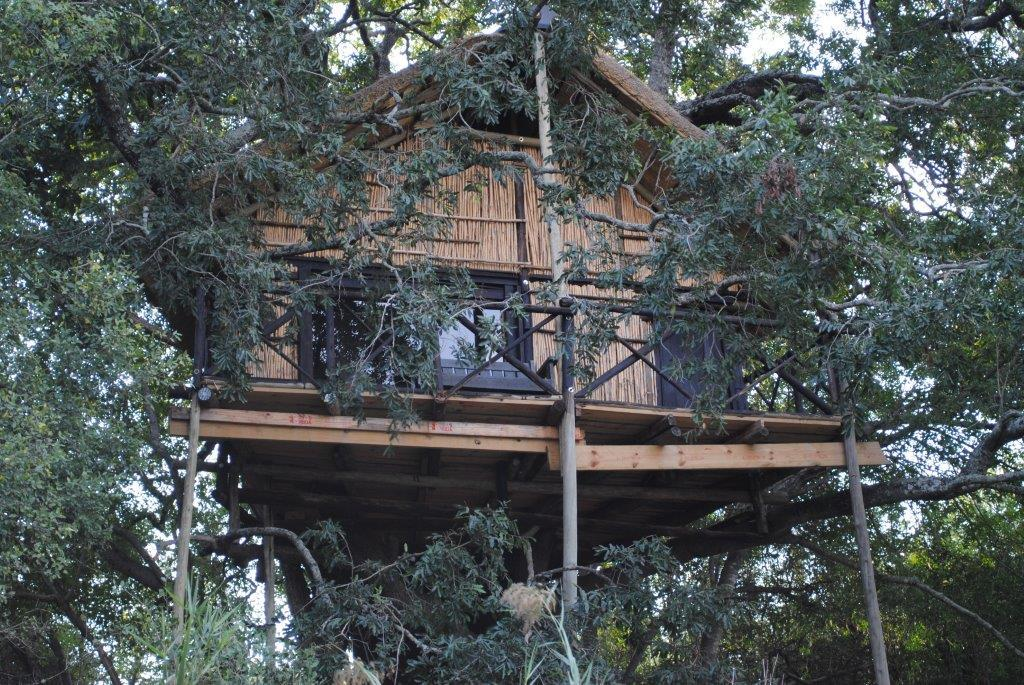 ‪Marc's Treehouse Lodge‬