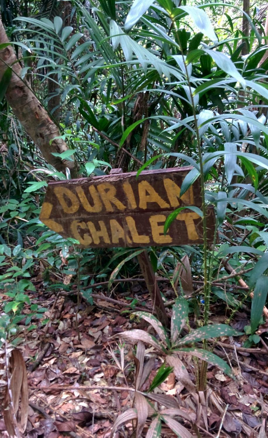 Jerantut Malaysia  city images : Durian Chalet Jerantut, Malaysia UPDATED 2016 Hotel Reviews ...